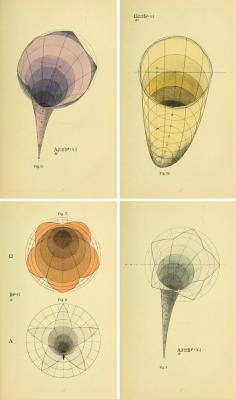 Psicología geométrica