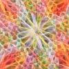 Fantasías de colores con M.C. Escher en la Alhambra