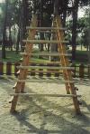 Teorema de Tales en el parque. Parque Grande. Zaragoza.